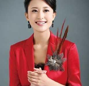 张蕾个人资料 央视女主持人张蕾丑闻