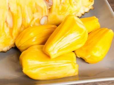 菠萝蜜炖 菠萝蜜的正确吃法
