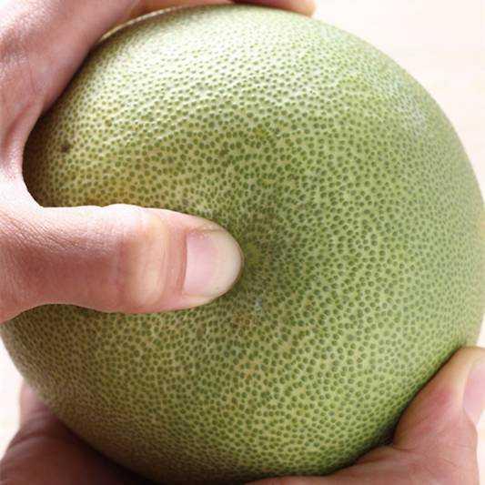 北川柚子种子番号 北川柚子中文字幕 波多野结你搜神记西瓜