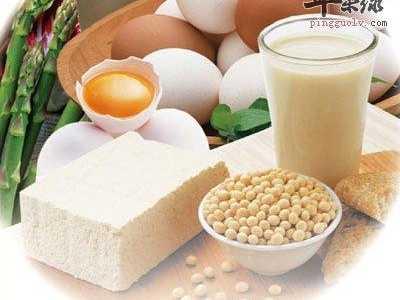 蛋白质的作用 蛋白质的功能
