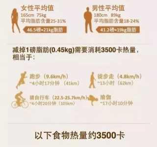 21天减肥法快速 21天减肥法能能瘦都少斤