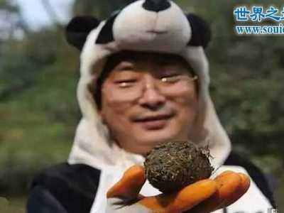 天价熊猫茶 44万一公斤的熊猫茶