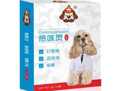 狗狗流黄鼻涕怎么用药 狗狗流清鼻涕转黄鼻涕