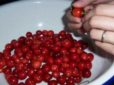 樱桃果酒 樱桃酿酒最简单的方法
