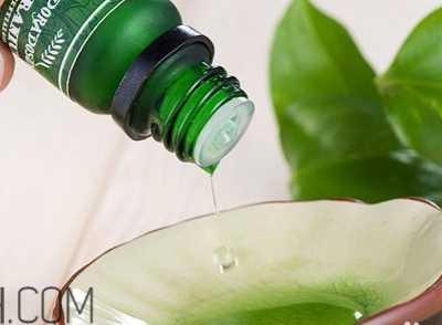 茶树精油祛痘 茶树精油可以直接涂在脸上吗