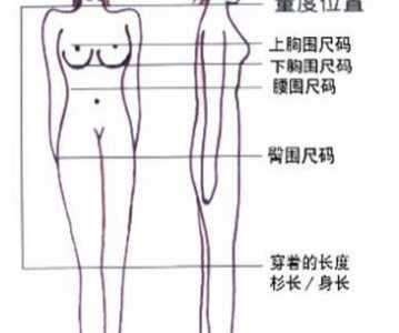 内衣尺码怎么看 女性怎么知道自己该穿多大的内衣尺码